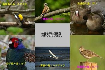 ouen_1-s.jpg